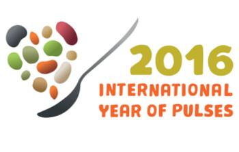 Any internacional de les llegums